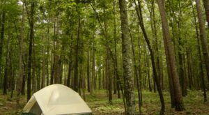 Kick Off Camping Season With A Weekend At Redding Rec In Arkansas
