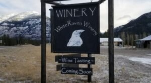 Montana's Newest Winery Celebrates All Things Local