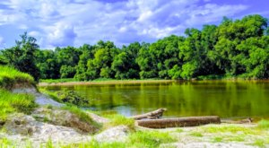 Over 1,700 Acres Of Adventure Awaits You At Bogue Chitto State Park Near New Orleans