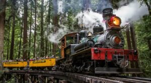 Roaring Camp Train Rides Offer Some Of The Most Breathtaking Views In Northern California