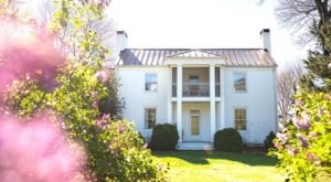 Nestled In The Heart Of Virginia's Wine Country, The Farmhouse Is A Must-See Vineyard Accommodation