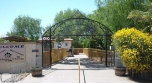 New Mexico's Alameda Park Zoo Is One Of The Oldest Zoos In The Southwest