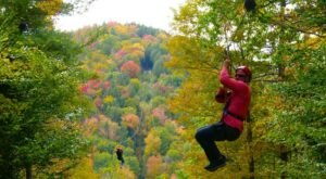 Take A Zip Line Canopy Tour On One Of North America's Longest Zip Lines At Berkshire East In Massachusetts