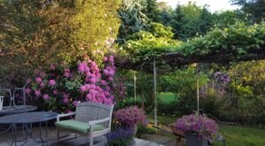 Escape To This Charming New York Bed and Breakfast In The Heart Of Long Island Wine Country