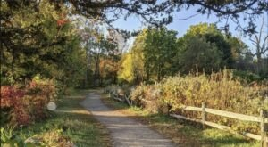 Explore A Revolutionary War Battleground On Battle Road Trail In Massachusetts