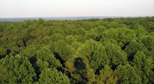 The Magnificent Overlook In Indiana That's Worthy Of A Little Adventure