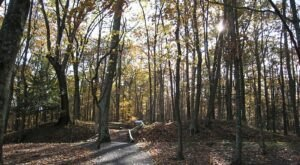 You Can Still Tour These Hand-Dug, 160-Year-Old Civil War Trenches In West Virginia