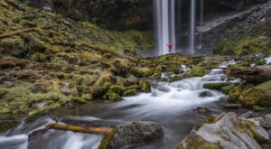 The Tamanawas FallsTrail In Oregon Is A 3.8-Mile Out-And-Back Hike With A Waterfall Finish