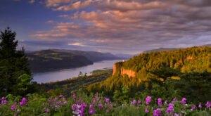 Columbia River Gorge: Take A Scenic Trip Along The Beautiful Border Of Oregon & Washington