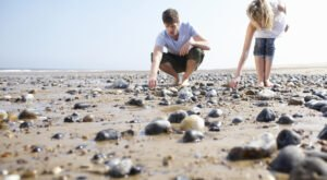 This Hidden Beach In The Lowcountry Of South Carolina Is The Best Place To Find Seashells