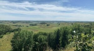 Walk Amongst The Wildflowers This Spring On The Chute And Heritage Trail Loop In Iowa