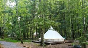 Tennessee's Gorgeous Glampground Getaway, Sassy Springs Farm And Retreat Is Truly One Of A Kind