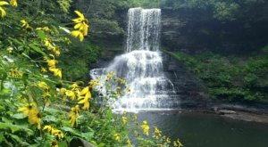 Cascade Falls In Virginia Is Considered One Of America's Best Waterfalls And We Couldn't Agree More