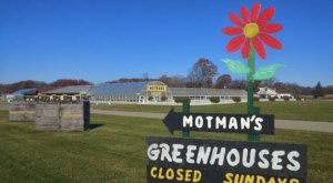 Motman's Greenhouses And Farm Market In Michigan Is A Vibrant Day Trip Destination
