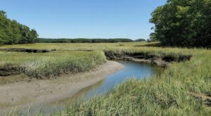 The Scenic Marsh On The Cutts Island Trail In Maine Offers A Beautifully Different Type Of Water View