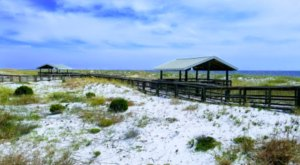Walk The Boardwalk Across Rolling Dunes & Swaying Sea Oats At Perdido Key State Park In Florida
