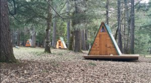 Oregon's New Glampground Getaway, Cedar Bloom Farm, Is Truly One-Of-A-Kind