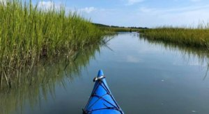 Embark On A Guided Eastern Shore Kayak Tour To A Local Winery For The Ultimate Virginia Experience