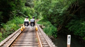 Ride A Railbike Through The Redwoods For A Breathtaking Excursion In Northern California