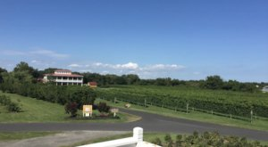 Bring Bordeaux To New Jersey By Vacationing At A Seaside Vineyard