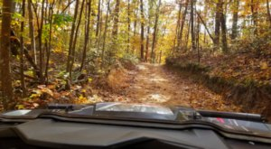 Get Your Adrenaline Pumping At Georgia's Coolest OHV Trail, Houston Valley