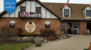 The Southwest Ohio Day Trip takes You To One Of The Best Waterfalls And Wineries In The State