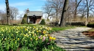Visit Wellfield Botanic Gardens In Indiana To See Tons Of Colorful Flowers This Spring