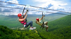 This Zipline Tour In New York Might Just Be One Of The Best In The Country