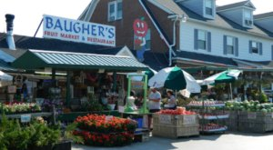 Baugher's Fruit Market In Maryland Offers Fresh Homemade Pie To Die For