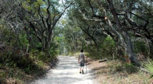 The 7 Beautiful Coastal Hikes In Alabama Are Short And Sweet