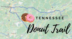 Take The Tennessee Donut Trail For A Delightfully Delicious Day Trip