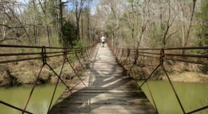 Explore 1,500 Acres Of Unparalleled Views Of The Appalachian Mountains On The Scenic Bear Creek Outcropping Trail In Mississippi