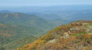 Craggy Pinnacle Trail Is An Easy Hike In North Carolina That Takes You To  An Unforgettable View