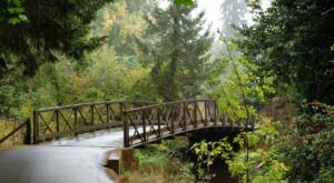 Bike Your Way Into Spring On This Gorgeous Greenway Trail In Washington