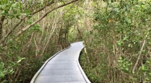 "Established In 1945, J.N. ""Ding"" Darling National Wildlife Refuge In Florida Is A Natural Paradise"