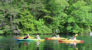 Alabama's DeSoto State Park Offers A Scenic Kayak Trip You Don't Want To Miss