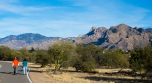 You Won't See Any Cars On The Loop, A 131-Mile, Pedestrian-Only Recreational Trail In Arizona