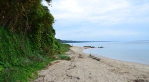 This Hidden Beach Along The Maryland Coast Is The Best Place To Find Seashells And Fossils