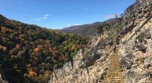 Walk Across A 200-Foot Suspension Bridge On NROCK's Via Ferrata In West Virginia