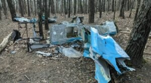 The Unique Hike In Alabama That Leads You To Plane Wreckage From 1972