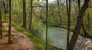 9 Easy And Beautiful Spring Hikes Everyone In Metro Detroit Will Love