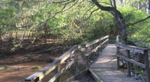 Discover Two Of Alabama's Hidden Gems In One Trip When You Visit Wood Duck Heritage Preserve And Siddique Nature Park