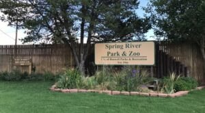 New Mexico's Spring River Zoo Is An Adorable Summer Destination For The Entire Family