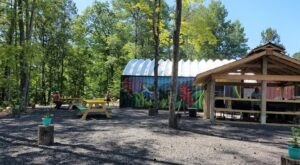 Dine In The Middle Of An Enchanted Forest At Tap Shack, A Jerk Chicken Restaurant In Wisconsin