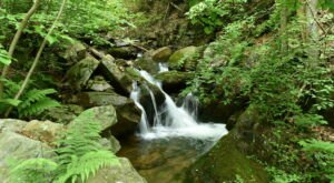 Visit Tom Lowe Trail, Home To Pennsylvania's Beautiful Emerald Waterfall