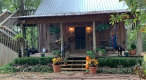 A Cabin In The Woods With Sandy Creeks, Oak Bottoms In Mississippi Is A Great Choice For Your Next Getaway