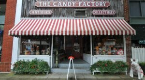 The Absolutely Whimsical Candy Store In North Carolina, The Candy Factory Will Make You Feel Like A Kid Again