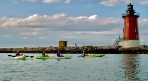 Paddle The Bay With Dolphins When You Embark On A Delaware Kayak Adventure