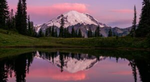 The 3 National Parks In Washington That Every True Washingtonian Should Visit At Least Once