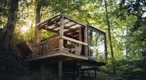 Sleep Among Towering Trees At The Forest Haven Otium In Ohio